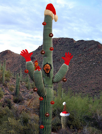 It's getting kind of prickly in here!